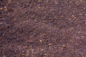 Dudutech - Solutions - Soil Amendment