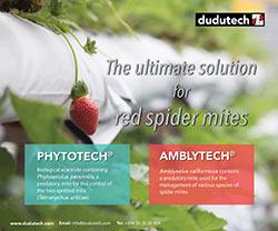 Dudutech - Follow the Ladybird